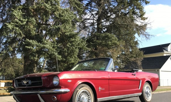 Ford Mustang convertible 1965 ( France dpt 69)