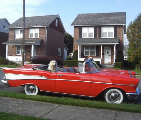 Chevrolet bel air convertible 1957 ( France dpt 01)