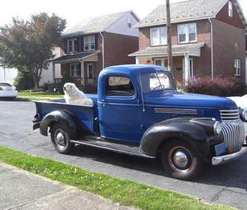Chevrolet 1/2 ton pick-up 1946  ( France dpt 24)